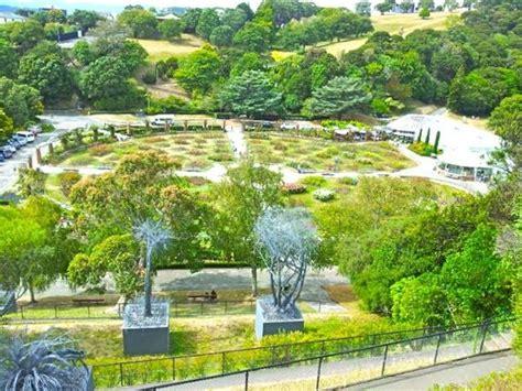 Wellington Botanical Gardens A Great View Of The Garden Picture Of Wellington Botanic Garden Wellington Tripadvisor
