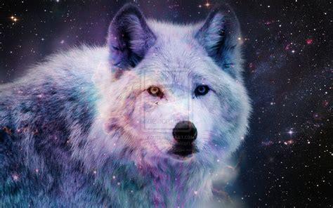 wallpaper galaxy wolf galaxy wolf wallpaper