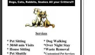 5 pet sitting flyer templates af templates