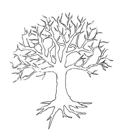 tree pattern without leaves coloring page tree tree without leaves coloring page to print and download
