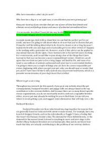Adoption Essays by Persuasive Speech