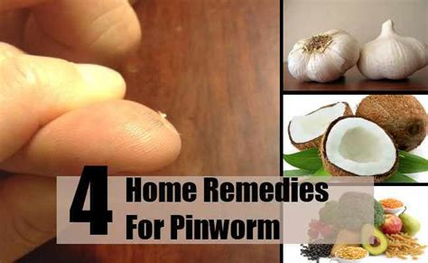 home remedies for pinworm pinworm pinworm home