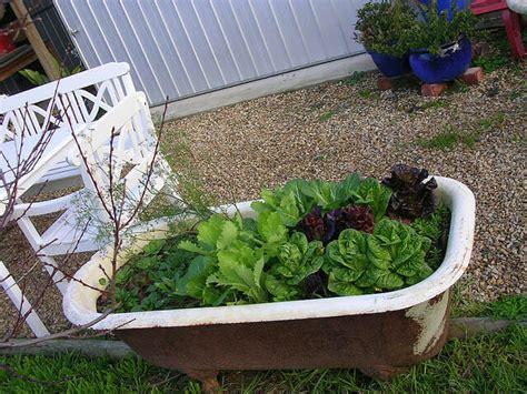 Bathtub Gardens by Inspirational Small Garden Ideas