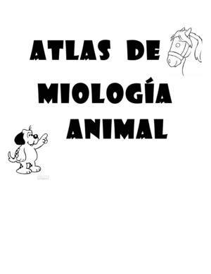 Calaméo - ATLAS-MIOLOGIA
