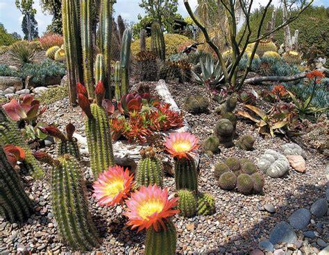 Another Cactus Rock Garden Yard Design And Ideas Pinterest Cactus Rock Garden