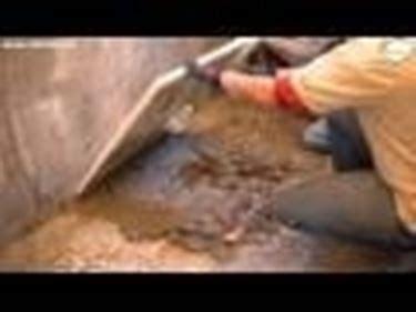 come posare un piatto doccia come posare un piatto doccia tutorial muratore fai