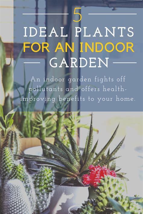 ikea indoor garden indoor garden pictures ikea home garden with indoor garden
