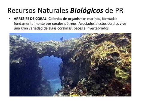 imagenes recursos naturales de puerto rico recursos naturales de puerto rico