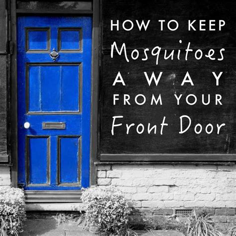 how to keep mosquitoes away from house 17 best images about outdoor ideas on pinterest fire