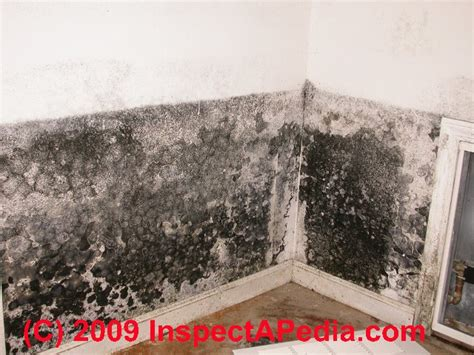 how to get mould off bathroom walls lpt how to get rid of mold on your bathroom ceiling