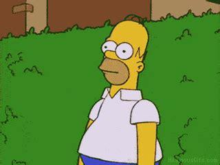 Simpsons Meme Generator - homer simpson bush