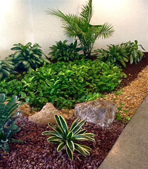 plantas para patio interior ideas para crear un jard 237 n para la sombra tipos de
