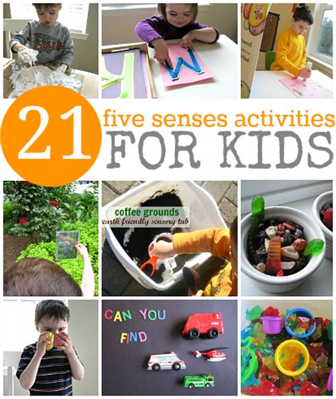 legacy of discovery liberate your senses books 21 five senses activities for