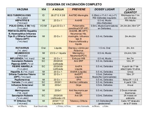 cuadro de vacunas esquema de vacunaci 243 n completo pdf