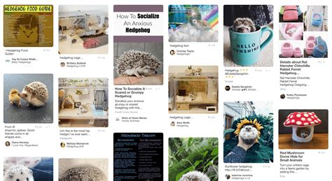 pinterest layout with css an exercise in css masonry by stephanie on codepen