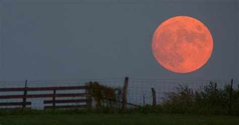 harvest moon most beautiful moons is harvest moon