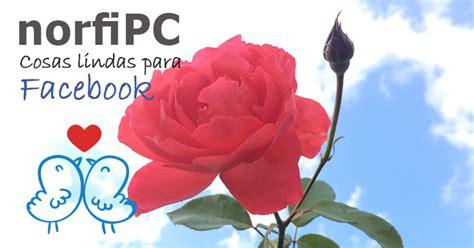 Imagenes Relajantes Para Facebook | index of img facebook