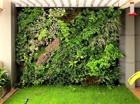 imagenes muros verdes 191 conoces los muros verdes haz uno en casa conocidos