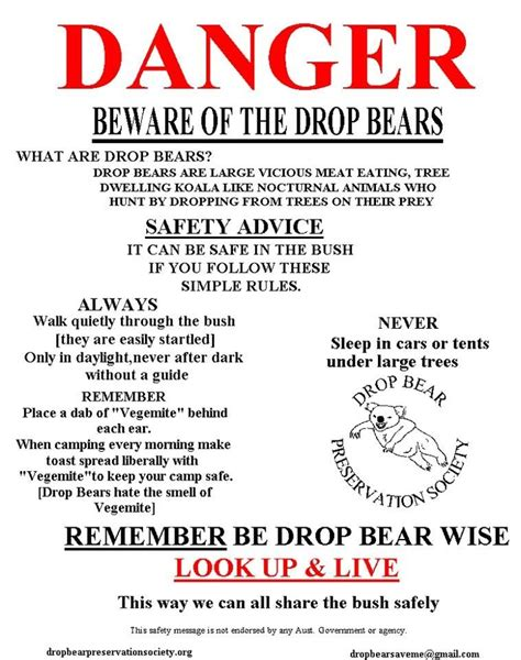 Dropped By Gets Visit From Folks by 19 Best Drop Bears Images On Drop