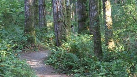 best trail best trail running
