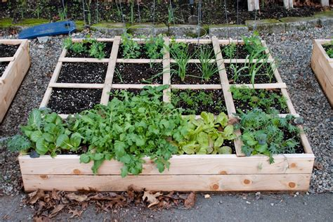 raised bed ideas deck easy to building raised garden bed plans