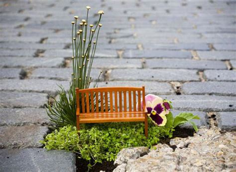 i giardini dei libri il piccolo libro dei piccoli giardini di steve wheen