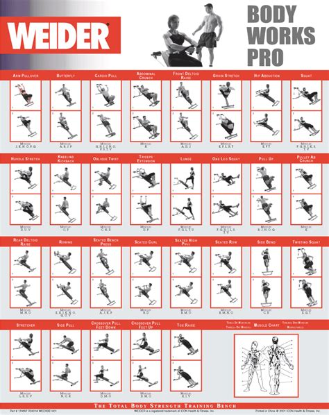 weider workout guide exercise chart home routine