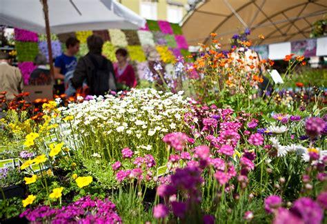 foto dei fiori festa dei fiori e mercato di primavera bolzano