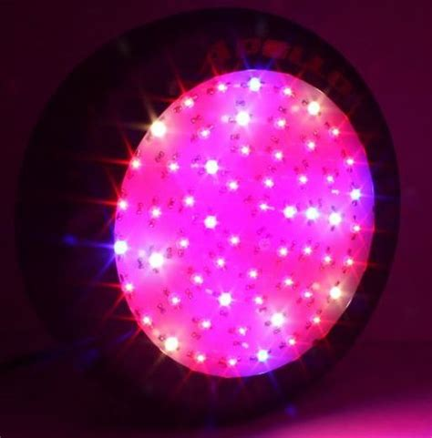 apollo power and light apollo horticulture gl60led 180w led grow light review