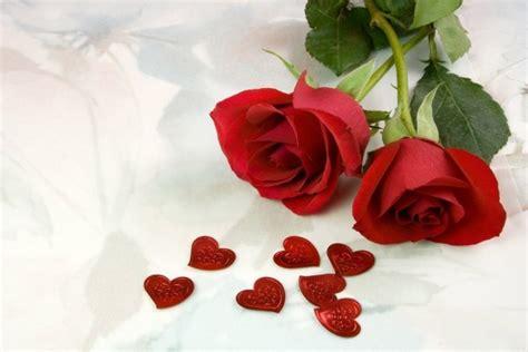 imagenes de rosas rojas y corazones dos rosas rojas con corazones 9564