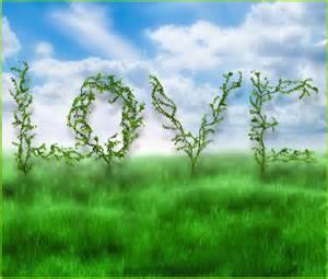 Garden of love graphics butterflywebgraphics