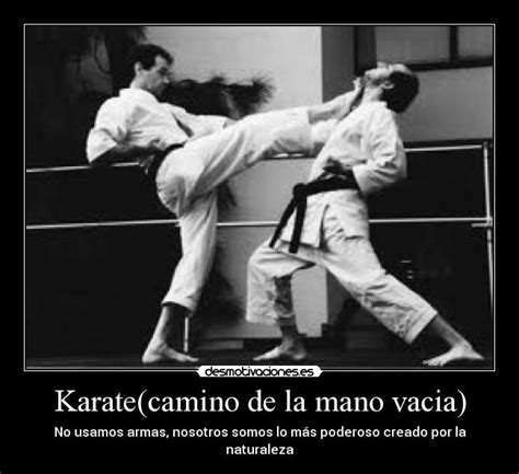 imagenes de mujeres karatecas usuario bushido 95 desmotivaciones