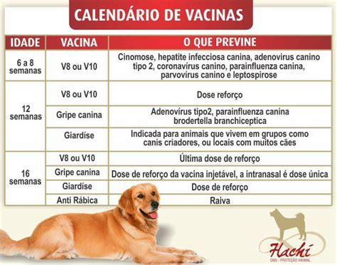 Calendario De Cachorro 301 Moved Permanently