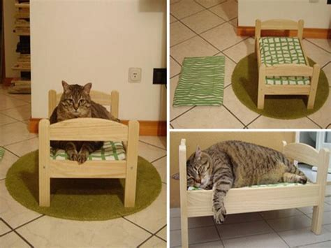 best cat beds luxury contemporary cat furniture all contemporary design