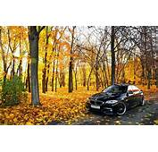 Forest Car BMW Nature Road Wallpapers HD / Desktop And
