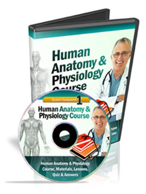How To Study Anatomy Human Anatomy And Physiology Course