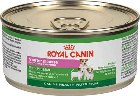 Food Royal Canin Mini Stater 3kg royal canin starter mousse babydog canned food 5 8 oz of 24 chewy