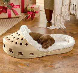 shoe shaped bed