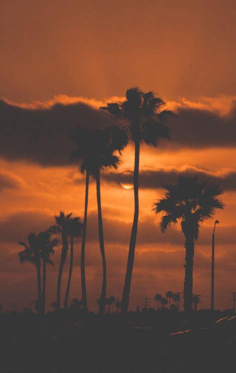 dark orange california sunset pictures   images  facebook tumblr pinterest