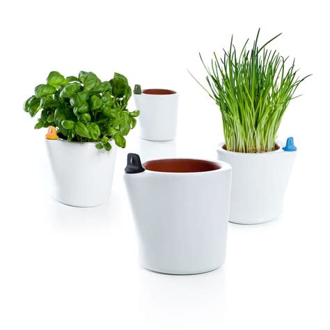 self watering amazoncom self watering planter 7quot water level