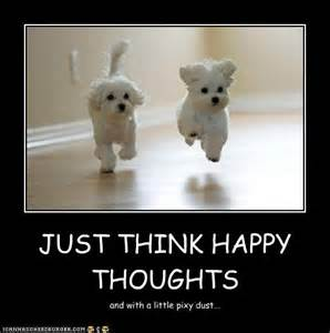 happy thoughts quotes like success