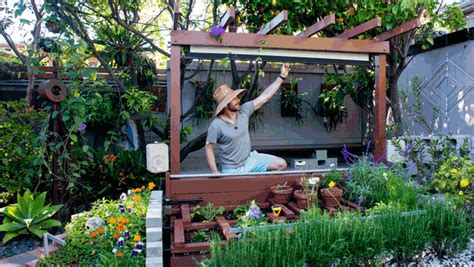 Diy Backyard Screen by Backyard Diy Projects For Summer Disclosuresave