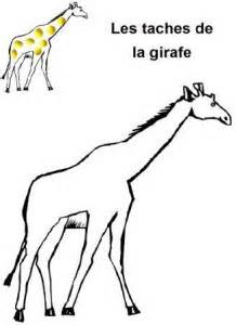 Exceptional Dessine Moi Un Bonhomme De Neige #8: Image-les-taches-de-la-girafe-en-pâte-à-modeler1-218x300.jpg