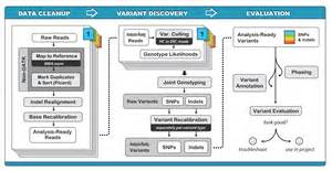 discovery workflow best practices for variant discovery in dnaseq gatk forum