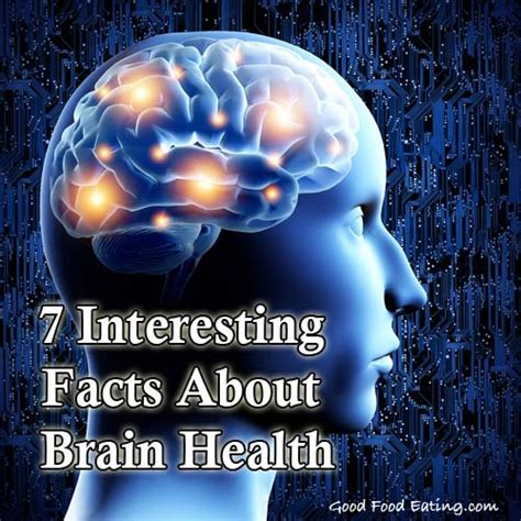 healthy fats and brain health 7 interesting facts about brain health