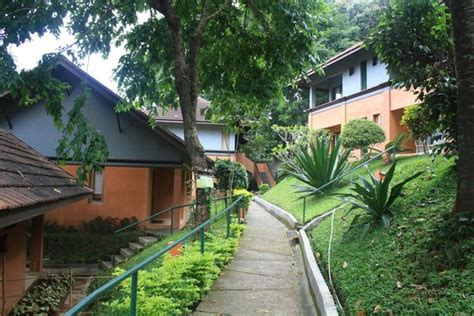 Cottages In Thekkady by Cottages Picture Of Abad Green Forest Resort Thekkady