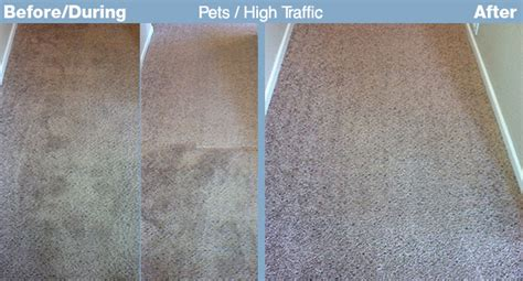 Best Rugs For High Traffic Areas by Best Carpet For High Traffic Srs Carpet Vidalondon