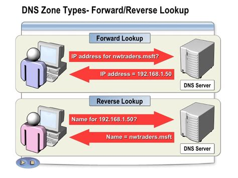 Forward Lookup And Lookup Dns In Windows Server 2003