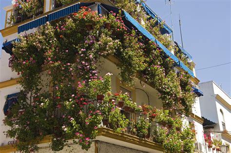 flower gardens for beginners balcony flower gardening for beginners