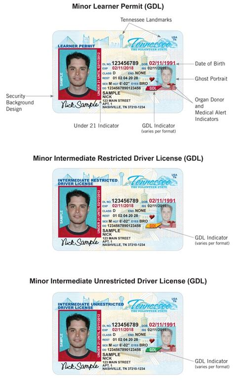 tennessee id card template driver license card exles